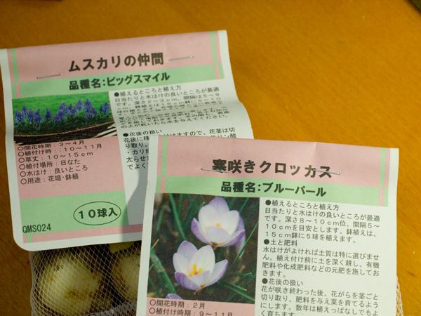 20111031.jpg