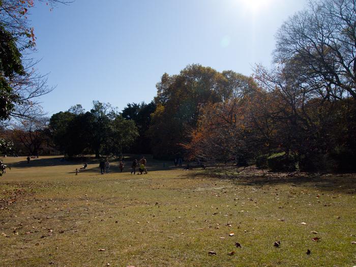 201112064.jpg