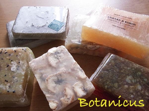 20100924 Botanics