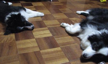 床で寝ました2