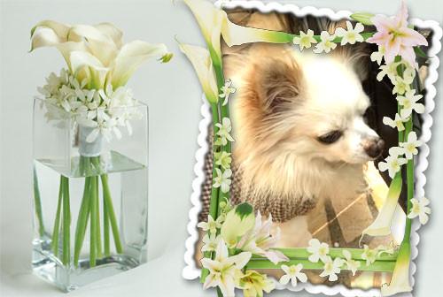 お花とソク