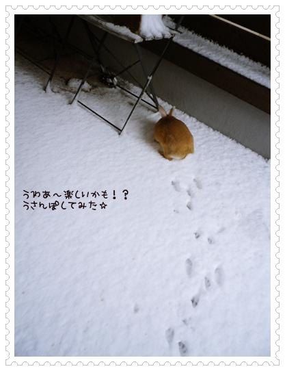 いなり雪2