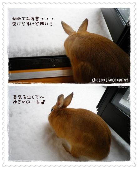 いなり雪1