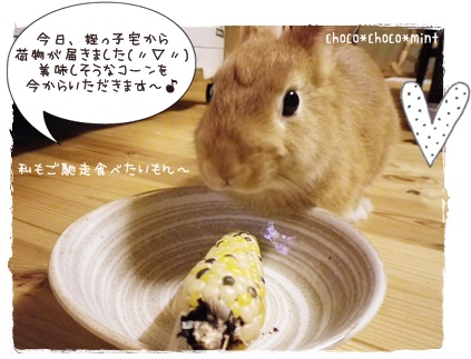 いなり怒2