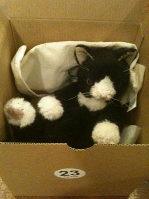 キャット・ナップ猫小