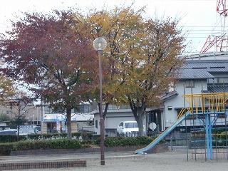 shukusho-CIMG1271.jpg