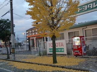 shukusho-CIMG1273.jpg
