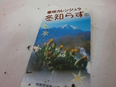 shukusho-CIMG1588.jpg