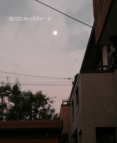 P1170153_moon.jpg