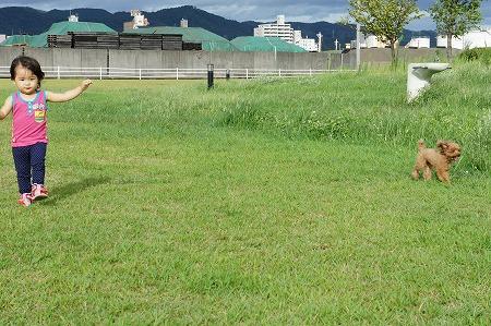 oyamizu 013