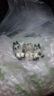 雑用姉妹-DVC00244.jpg