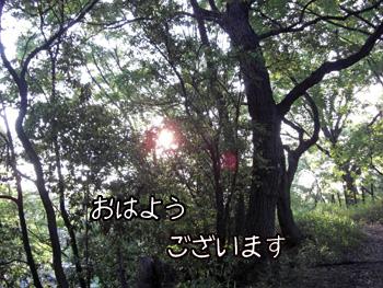 CIMG6542.jpg