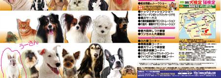 tokyo_m_06.jpg