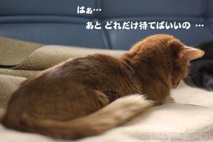 2010_04_27_2.jpg