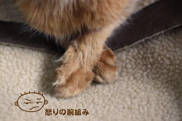 2010_04_27_4.jpg