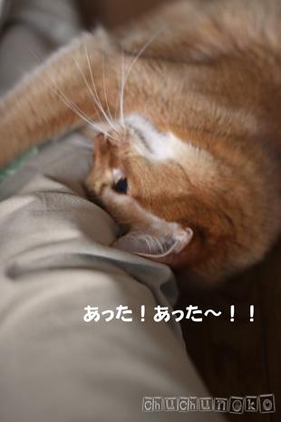 2010_05_03_5.jpg