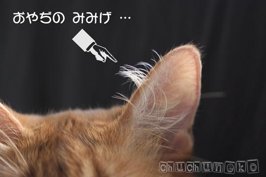2010_06_07_4.jpg