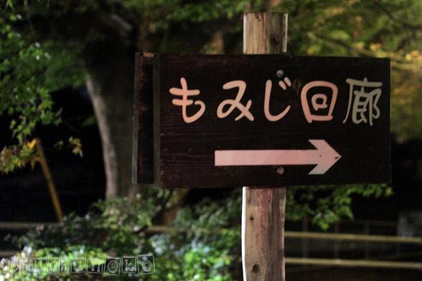 2010_11_14_1.jpg