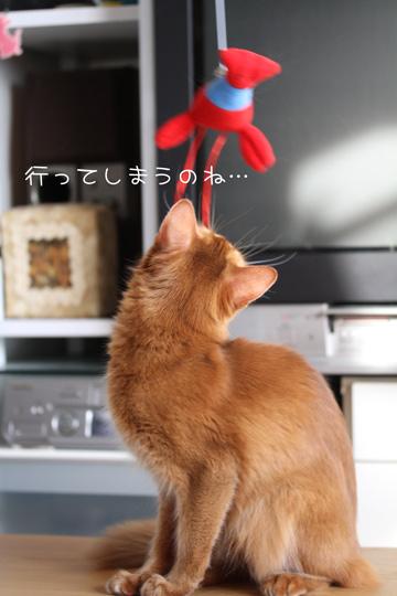 2010_12_03_5.jpg