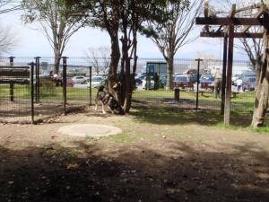 2010041001.jpg