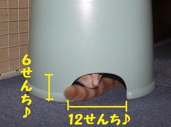 210930潜伏2