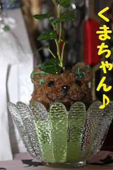 211006植物3
