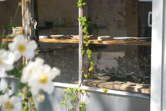 窓から豆皿