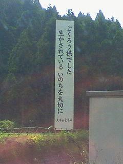 201106231506000.jpg