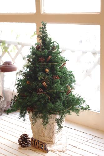 Cloveテイストのクリスマスツリー*グリーン