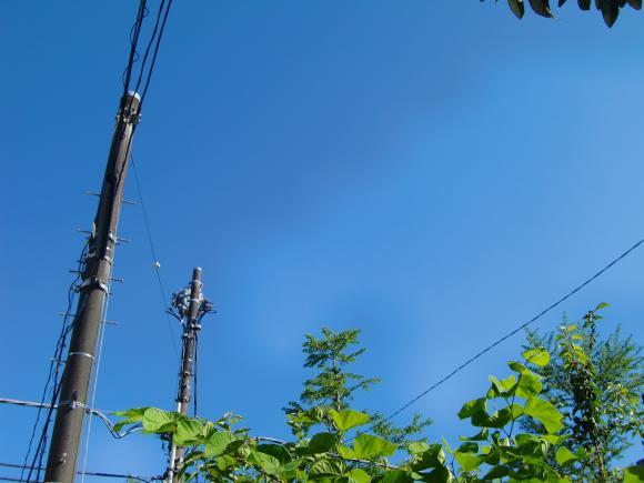 2011_0711_153854-CIMG4831_convert_20110713110624.jpg