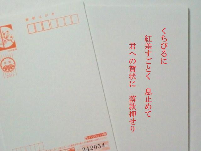 2011_1230_035304-CIMG6225.jpg