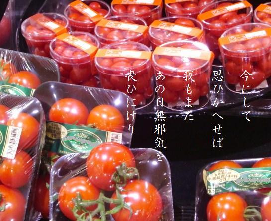 野菜たち美しき