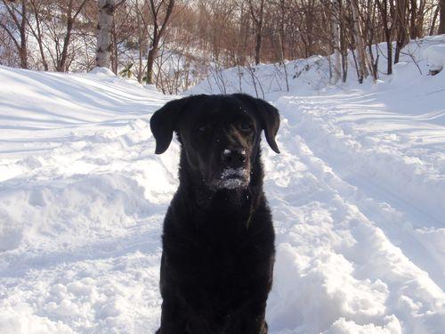 冬 2007