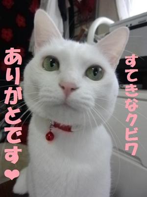 チャーミィちゃん2