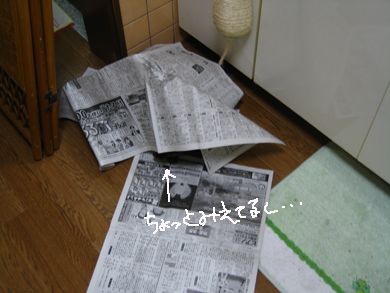 新聞とりぶ