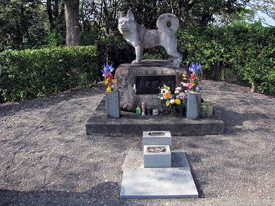クロちゃんのお墓