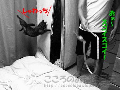 jump002