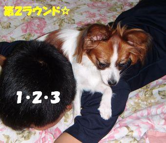 DSCF1416.jpg
