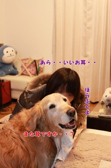 IMG_2747.jpg