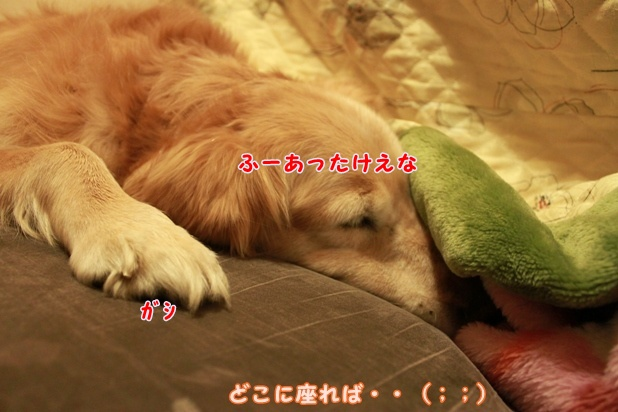 IMG_3014.jpg
