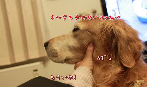 IMG_3149.jpg