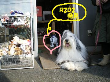 R2D2 発見