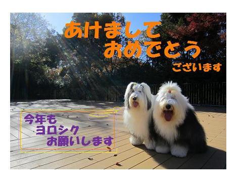 美香子 年賀 3