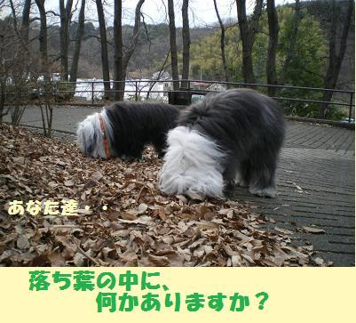 念珠坂公園