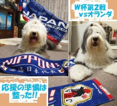 Cookie_20100619155400.jpg