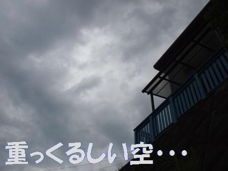P7036111.jpg