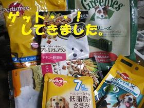 resize4961_20101218191257.jpg