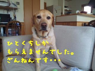 DVC00440_20110809144319.jpg