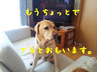 DVC00817.jpg