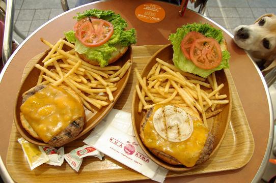 110514-16humburger.jpg